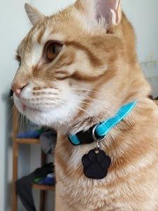 Médaille patte de chat noire côté empreinte